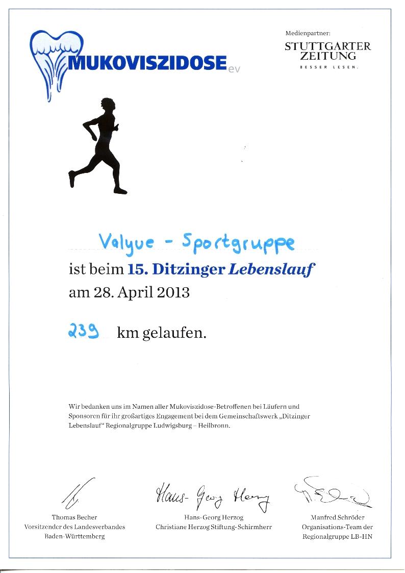 Ditzinger Lebenslauf 2013