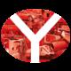 Valyue Portfolio