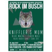 Rock-im-Busch-Weilimdorf-2017